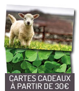 Cartes cadeaux à partir de 30€
