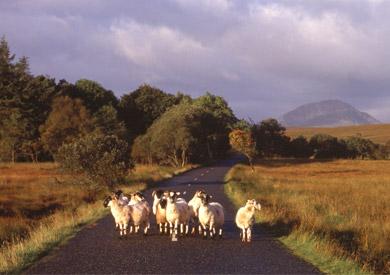 Le comté de Donegal