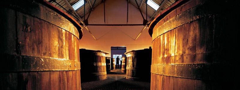 Fermentation du whisky Glenfarclas