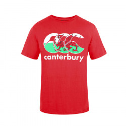 T-Shirt Nations Pays de Galles RougeCanterbury