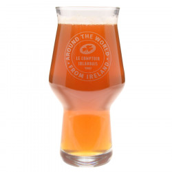 Glass Beer Craft Master One 33cl