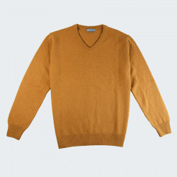 Best Yarn Curry V-neck Sweater