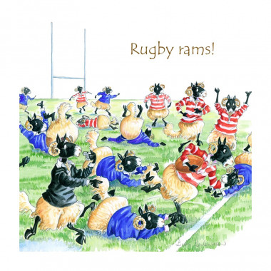 Rugby Rams Coaster