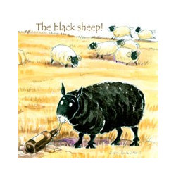 The Black Sheep Coaster