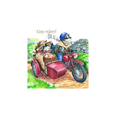 Easy Riders Coaster