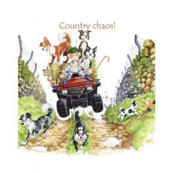 Country Chaos Coaster