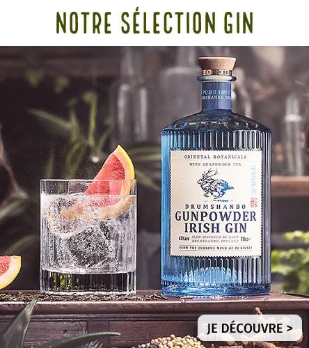 Notre sélection gin