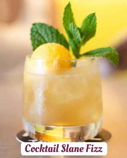 Cocktails Slane Fizz