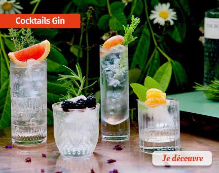Recettes Cocktails à base de Gin