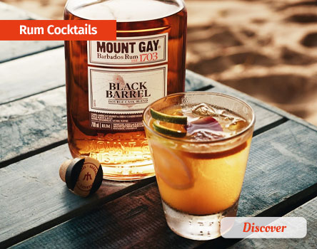 Cocktails Recipes with Rum