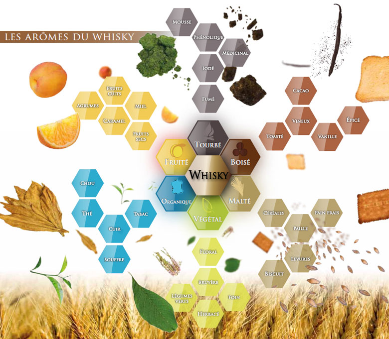 Palette aromatique du whisky