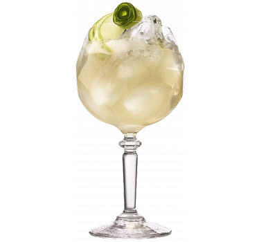 Orchard Collins